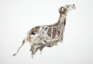 Le bélier, encre sur estampe numérique, 207x150 cm, 2012