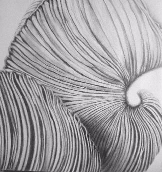 Une œuvre d'ALBASIO Isabelle